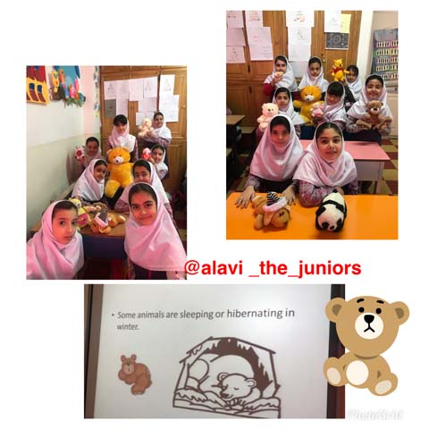 Mina class thirdlevel science time. some animals like bears are hibernating in winter.jpg - 63.19 کیلو بایت